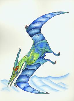 Le ptéranodon. Source : http://data.abuledu.org/URI/55471424-le-pteranodon