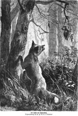 Le renard et le corbeau en forêt. Source : http://data.abuledu.org/URI/58b312f2-le-renard-et-le-corbeau-en-foret