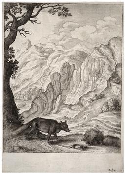 Le renard et le hérisson. Source : http://data.abuledu.org/URI/5193d0d3-le-renard-et-le-herisson