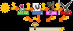 Le réseau trophique dans la chaîne alimentaire. Source : http://data.abuledu.org/URI/50b7e29b-le-reseau-trophique-dans-la-chaine-alimentaire