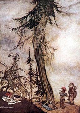 Le sapin et le roncier. Source : http://data.abuledu.org/URI/517d187f-le-sapin-et-le-roncier