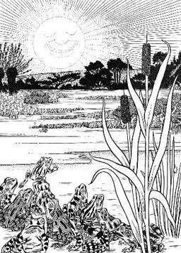 Le Soleil et les Grenouilles. Source : http://data.abuledu.org/URI/519c051c-le-soleil-et-les-grenouilles