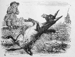 Le vieillard et l'âne. Source : http://data.abuledu.org/URI/51f9f04e-le-vieillard-et-l-ane
