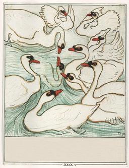 Le vilain petit canard - 30. Source : http://data.abuledu.org/URI/525bb9f1-le-vilain-petit-canard-30