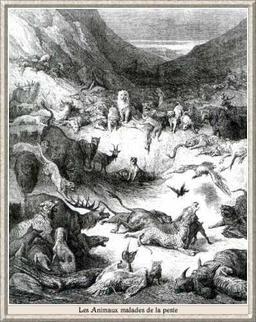 Les Animaux malades de la Peste. Source : http://data.abuledu.org/URI/519cece7-les-animaux-malades-de-la-peste
