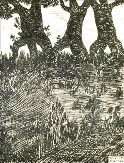 Les arbres en marche. Source : http://data.abuledu.org/URI/56e49d55-les-arbres-en-marche