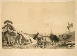 Les Auckland. Source : http://data.abuledu.org/URI/59819ca4-les-auckland