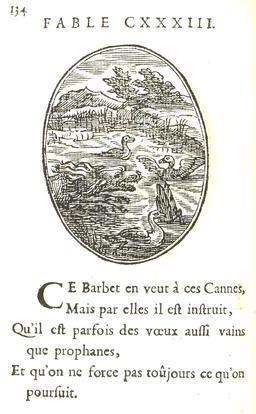 Les cannes et le petit barbet. Source : http://data.abuledu.org/URI/5916bd94-les-cannes-et-le-petit-barbet