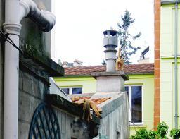 Les chats de gouttière de Georges Brassens. Source : http://data.abuledu.org/URI/53b5b394-les-chats-de-gouttiere-de-georges-brassens
