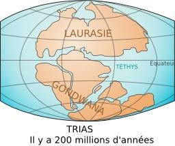 Les continents Gondwana et Laurasie au Trias. Source : http://data.abuledu.org/URI/506ca727-les-continents-gondwana-et-laurasie-au-trias