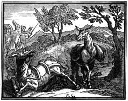 Les deux mulets. Source : http://data.abuledu.org/URI/510be0a2-les-deux-mulets