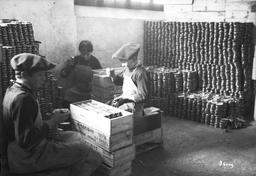 Les enfants mettent en caisse les boîtes de sardines. Source : http://data.abuledu.org/URI/58c71b39-les-enfants-mettent-en-caisse-les-boites-de-sardines