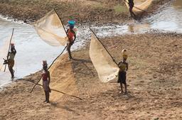 Femmes de pêcheurs sur le fleuve Niger en Guinée. Source : http://data.abuledu.org/URI/5538fa92-les-femmes-de-pecheurs-sur-fleuve-niger-en-guinee