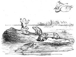 Les grenouilles qui demandent un roi. Source : http://data.abuledu.org/URI/51962d1b-les-grenouilles-qui-demandent-un-roi