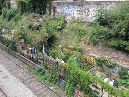 Les jardins du ruisseau à Paris. Source : http://data.abuledu.org/URI/542029e8-les-jardins-du-ruisseau-a-paris