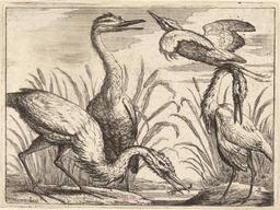 Les quatre hérons. Source : http://data.abuledu.org/URI/54b2f42e-les-quatre-herons