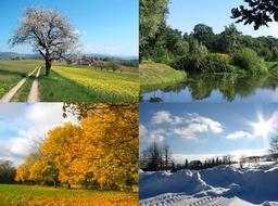 Les quatre saisons. Source : http://data.abuledu.org/URI/56c386c7-les-quatre-saisons