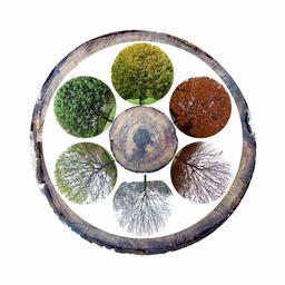 Les six saisons écologiques. Source : http://data.abuledu.org/URI/527558fa-les-six-saisons-ecologiques