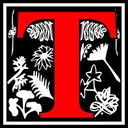 Lettre initiale T. Source : http://data.abuledu.org/URI/50e4dc7b-lettre-initiale-t