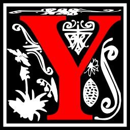 Lettre initiale Y. Source : http://data.abuledu.org/URI/50e4de3c-lettre-initiale-y
