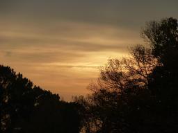 Lever de soleil en décembre. Source : http://data.abuledu.org/URI/56671cc8-lever-de-soleil-en-decembre