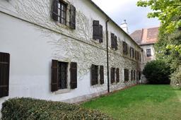 Lierre sur façade. Source : http://data.abuledu.org/URI/538613cb-lierre-sur-facade