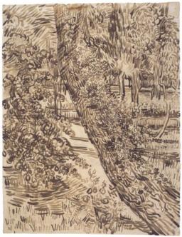Lierre sur un pin du jardin de l'asile. Source : http://data.abuledu.org/URI/55148fb2-lierre-sur-un-pin-du-jardin-de-l-asile