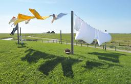 Linge dans le vent. Source : http://data.abuledu.org/URI/564cf20f-linge-dans-le-vent