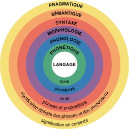 Linguistique. Source : http://data.abuledu.org/URI/58e51e79-linguistique
