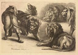 Lions et lionne d'après Rubens. Source : http://data.abuledu.org/URI/54b2f230-lions-et-lionne-d-apres-rubens