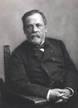 Louis Pasteur. Source : http://data.abuledu.org/URI/518e4309-louis-pasteur