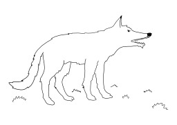 Loup. Source : http://data.abuledu.org/URI/5026be6a-loup