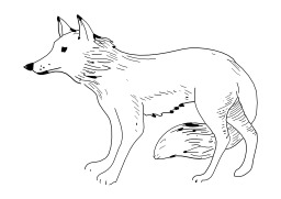Loup. Source : http://data.abuledu.org/URI/5026be7d-loup