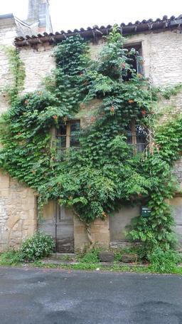 Maison abandonnée à Montignac-24. Source : http://data.abuledu.org/URI/5994ebda-maison-abandonnee-a-montignac-24