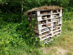 Maison des insectes dans le parc du Bourgailh. Source : http://data.abuledu.org/URI/5826c655-maison-des-insectes-dans-le-parc-du-bourgailh