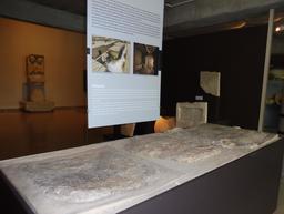 Maisons romaines à Lattes. Source : http://data.abuledu.org/URI/58d4baec-maisons-romaines-a-lattes