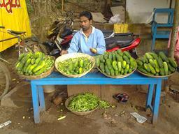 Marchand de concombres. Source : http://data.abuledu.org/URI/504e534d-marchand-de-concombres