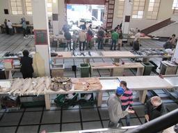 Marché de poisson dans l'île de Madère. Source : http://data.abuledu.org/URI/55089e2c-marche-de-poisson-dans-l-ile-de-madere
