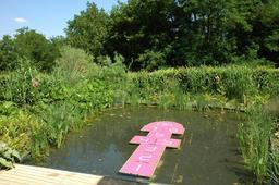 Marelle rose sur plan d'eau. Source : http://data.abuledu.org/URI/538d0b07-marelle-rose-sur-plan-d-eau