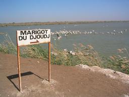 Marigot du Djoudj au Sénégal. Source : http://data.abuledu.org/URI/52d559d0-marigot-du-djoudj-au-senegal