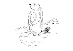 Marmotte. Source : http://data.abuledu.org/URI/5026ce35-marmotte