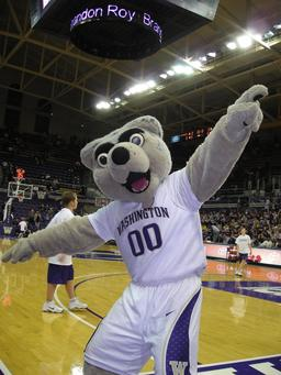 Mascotte de Basketball. Source : http://data.abuledu.org/URI/588534c8-mascotte-de-basketball