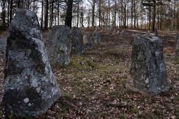Menhirs suédois de l'Âge du Fer à Hässleholm. Source : http://data.abuledu.org/URI/52b9a1f1-menhirs-suedois-de-l-age-du-fer-a-hassleholm
