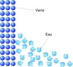 Ménisque de l'eau. Source : http://data.abuledu.org/URI/5287aee9-menisque-de-l-eau