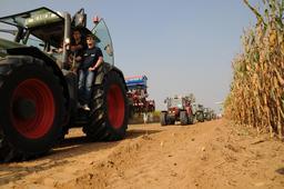 Moisson dans un champ de maïs belge. Source : http://data.abuledu.org/URI/5288c914-moisson-dans-un-champ-de-mais-belge