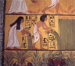 Moisson et arrachage du lin en Égypte. Source : http://data.abuledu.org/URI/5075c086-moisson-et-arrachage-du-lin-en-egypte