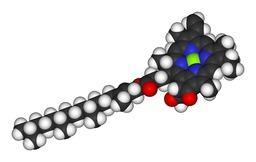 Molécule de Chlorophylle a. Source : http://data.abuledu.org/URI/50e41950-molecule-de-chlorophylle-a