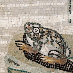 Mosaïque de grenouille. Source : http://data.abuledu.org/URI/5351c498-mosaique-de-grenouille