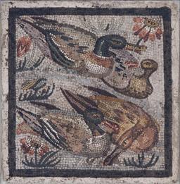 Mosaïque des canards. Source : http://data.abuledu.org/URI/53297632-mosaique-des-canards
