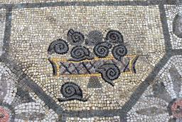 Mosaïque des escargots. Source : http://data.abuledu.org/URI/5542b525-mosaique-des-escargots